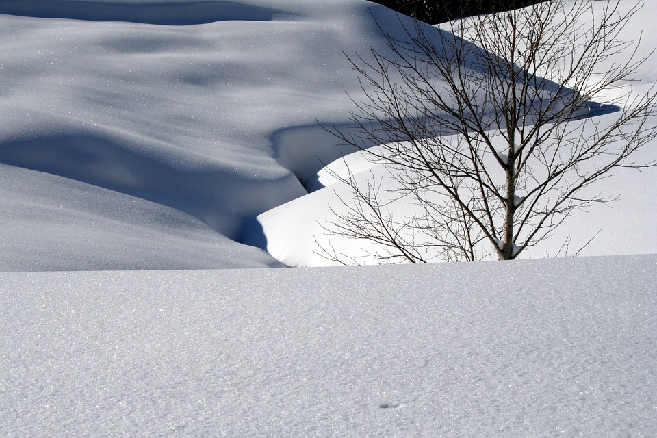 Snow, Snow Landscape, Sparkle, Sun, Winter, Cold