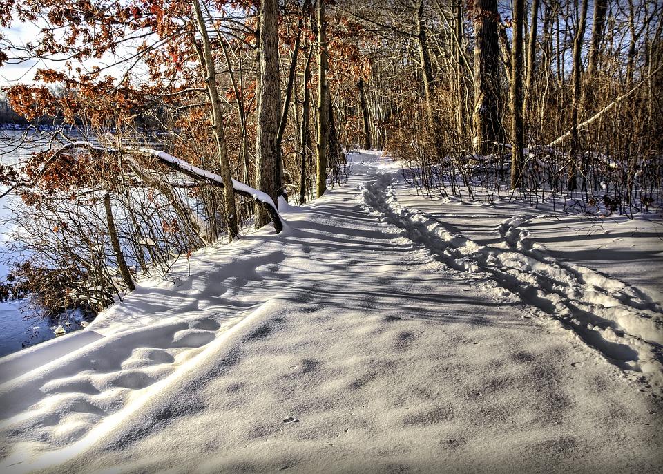 Path, Snow, Track, Winter, Gazebo, Cold, Nature, Frost