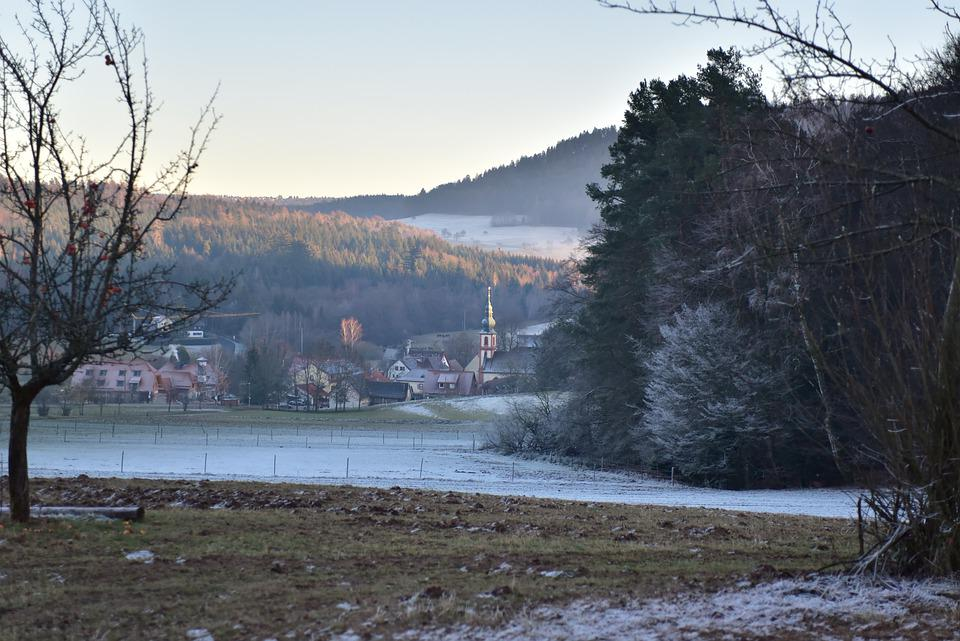 Black Forest, Winter, Snow, Cold, Nature, Forest