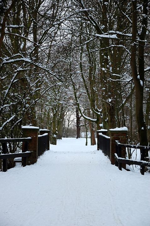 Bridge, Snow, Winter White, Snowy, Cold, Wintry, Frosty