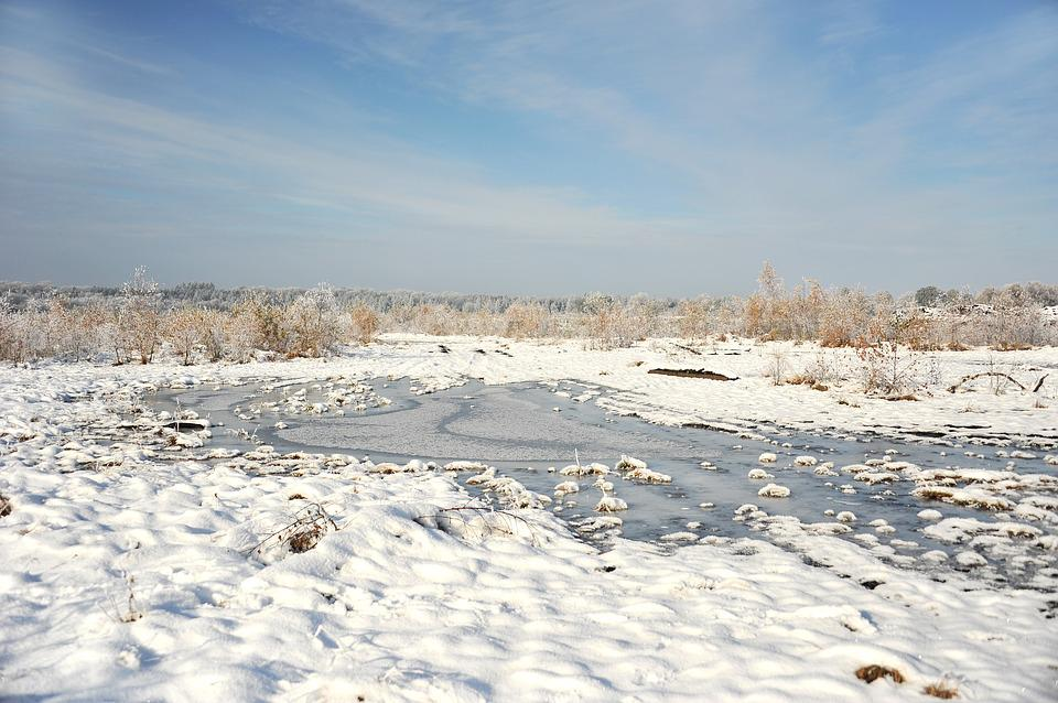 Landscape, Peat, Moor, Snow, Hoarfrost, Trees, Cold