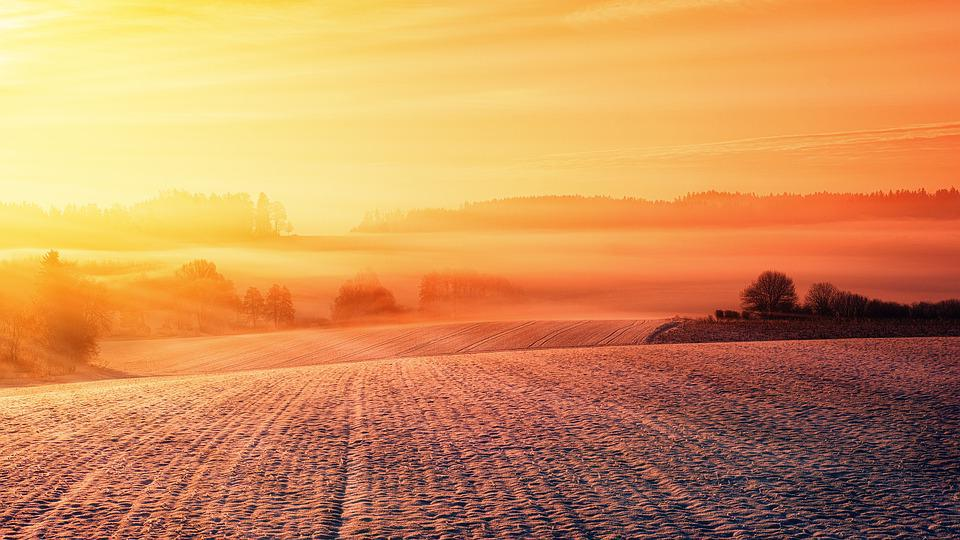 Snow, Field, Landscape, Winter, Nature, Wintry, Cold
