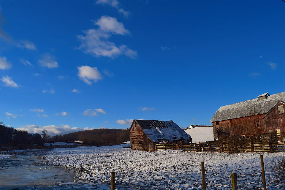 Winter, Snow, Shed, Wooden, Rural, Cold, White