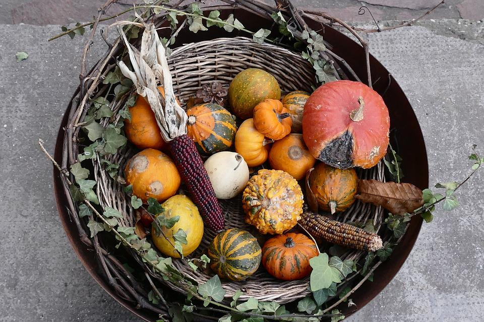 Autumn, Bowl, Collected, Still Life, Autumn Decoration