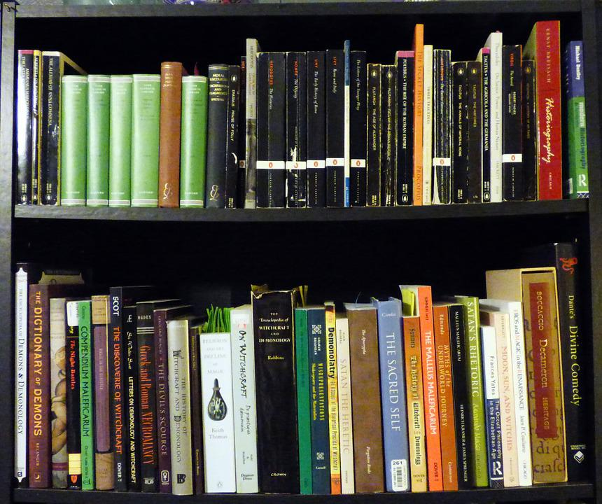 Read Book Shelf free photo collection classics read bookshelf books reading - max