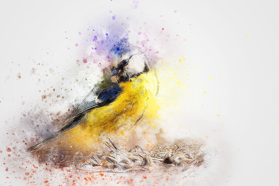 Free photo Color Animal Abstract Vintage Bird Watercolor Art - Max Pixel