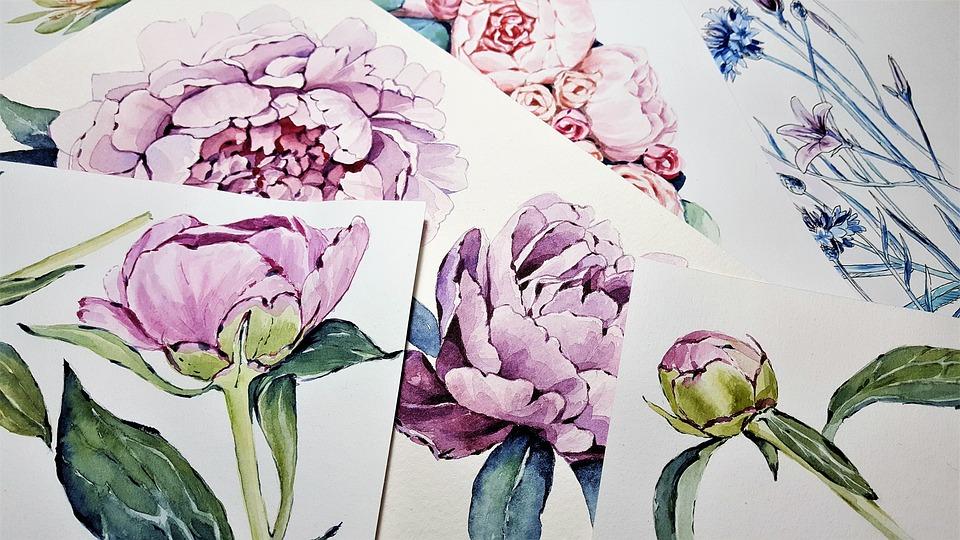 free photo color flowers watercolor peonies art painting max pixel