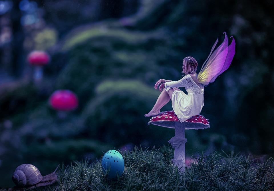 Nature, Flower, Color, Plant, Garden, Light, Fee