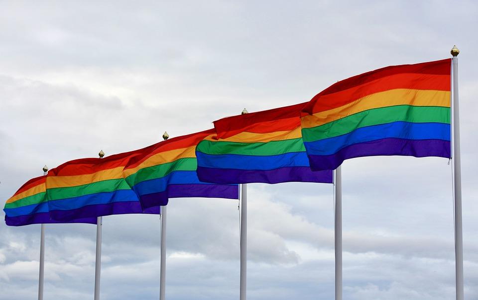Pride, Pride Day, Rainbow, Color, Flag, Lgbt, Lesbian