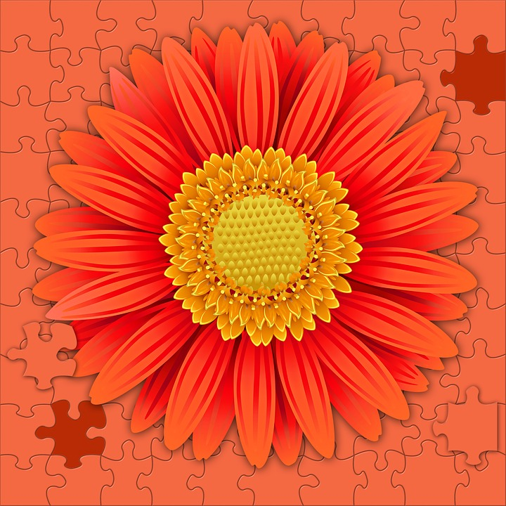 Flower, Plant, Petal, Summer, Color, Puzzle, Background