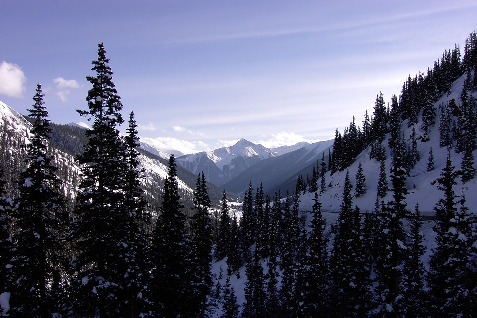 Mountains, Colorado, Winter, Snow, Forest, Scenery
