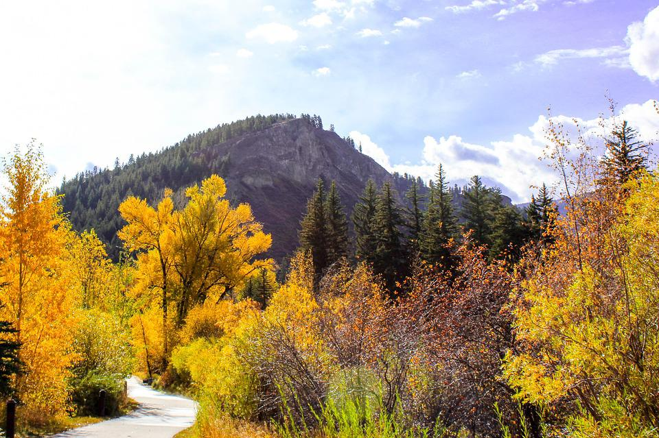 Mountain, Trail, Autumn, Colorado, Landscape, Outdoors