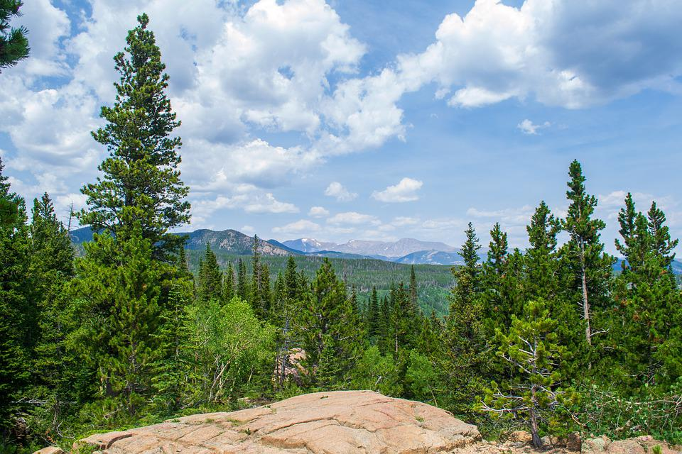 Rocky Mountains, Forest, Landscape, Colorado, Nature