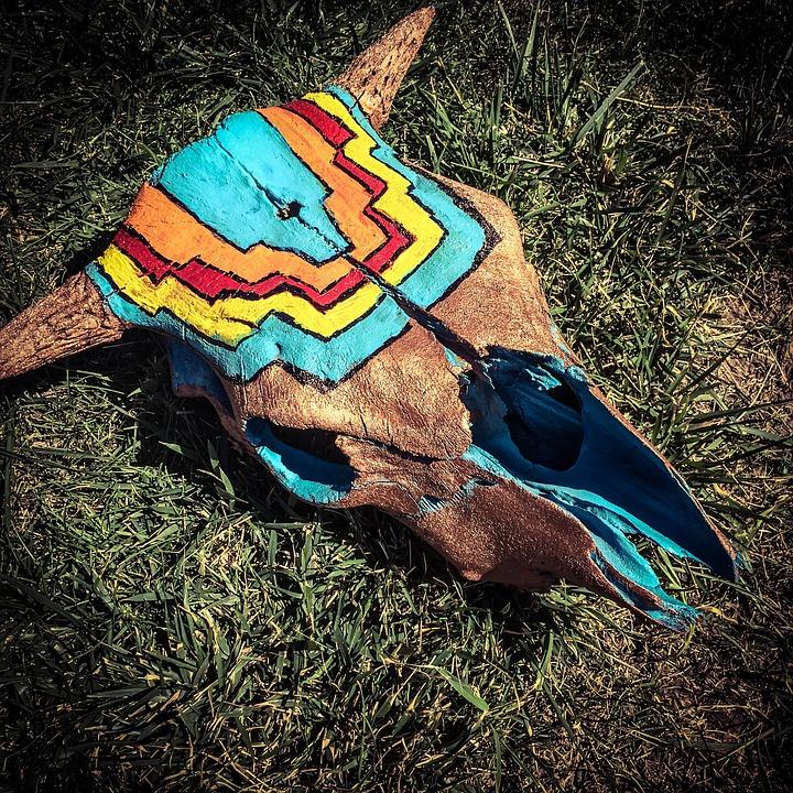 Skull, Painted, Colorado, Southwest, Bull