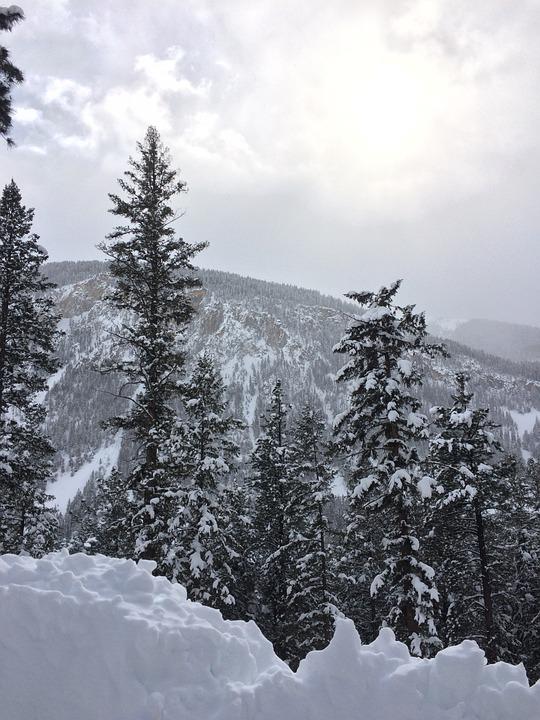 Colorado, Winter, Snow, Landscape, Rocky, Mountain