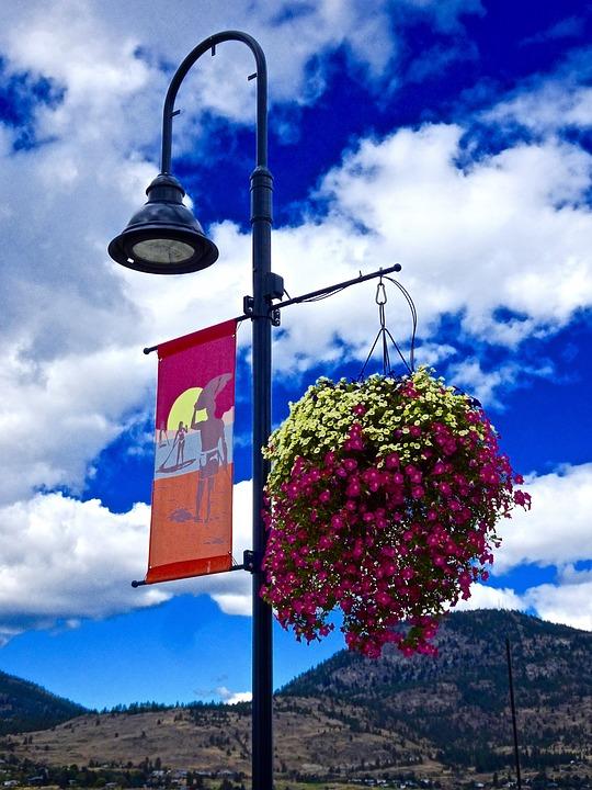 Lampost, Floral Arrangement, Decoration, Colorful