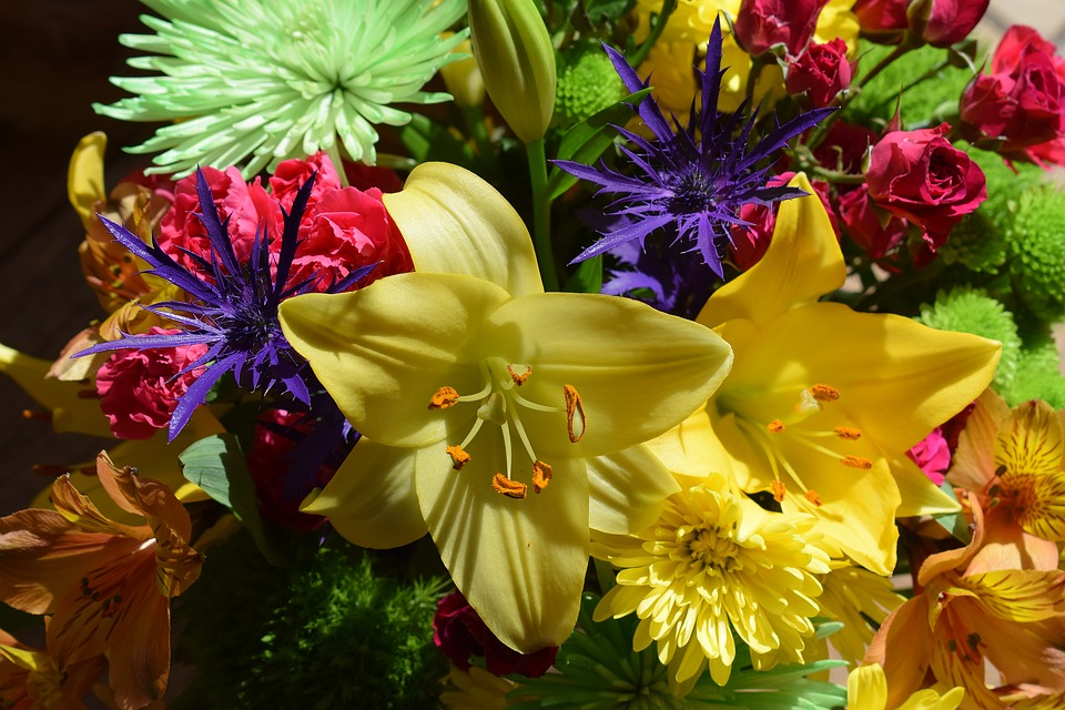 Colorful Flower Bouquet, Flower, Blossom, Bloom, Nature