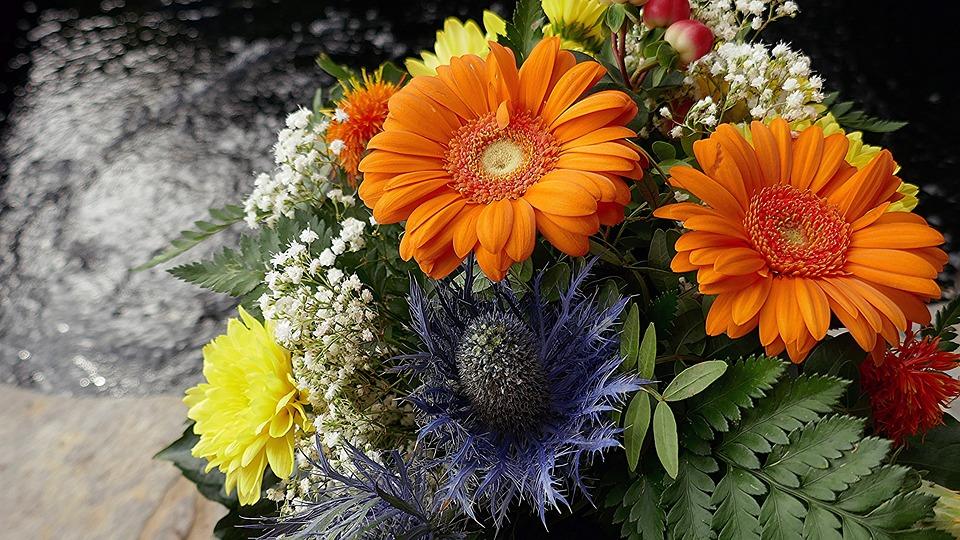 Bouquet, Colorful, Summer, Cut Flowers, Flowers