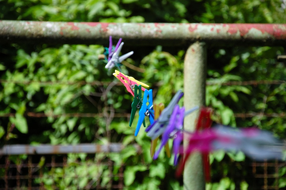 Clothes Line, Clamp, Colorful, Garden, Green, Stainless
