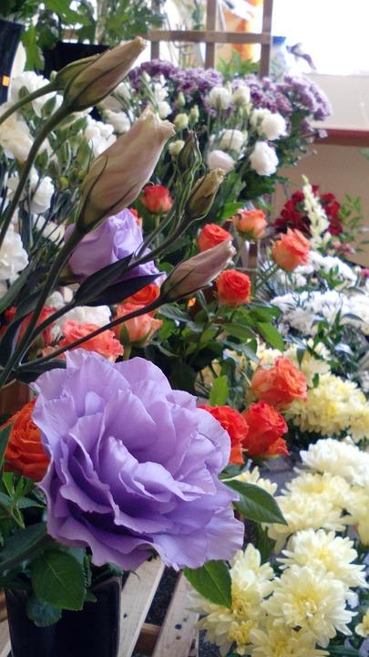 Flower Shop, Flowers, Colorful, Fresh, White, Purple