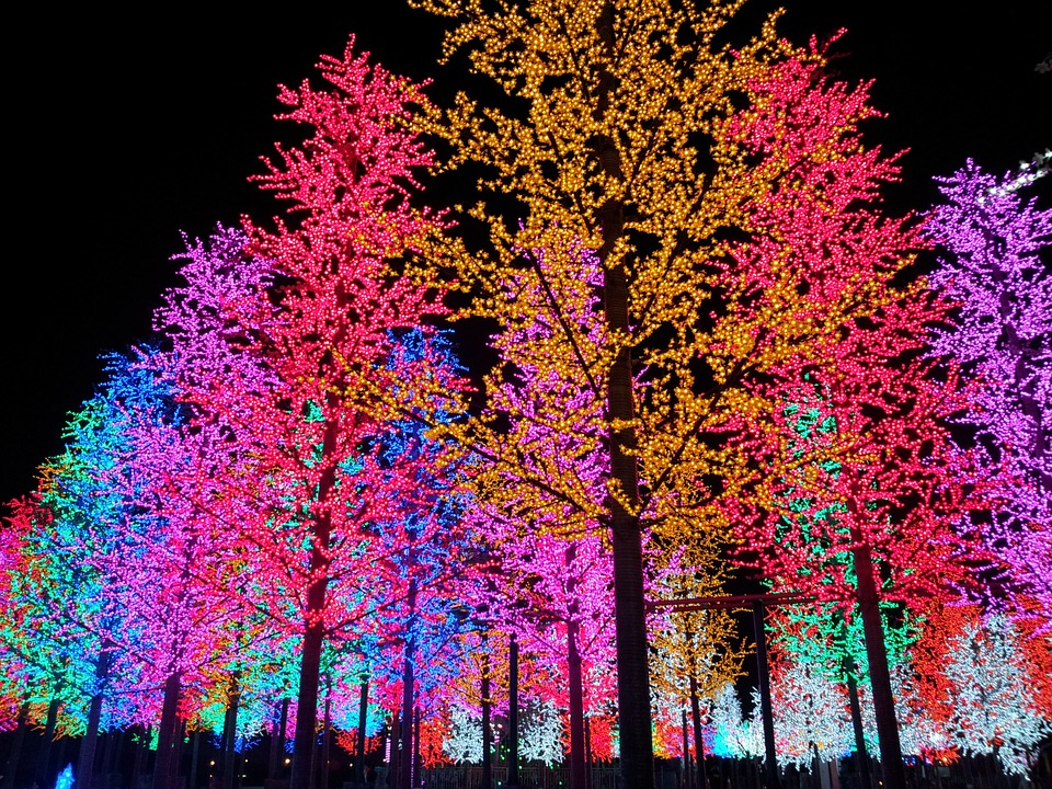 Artificial, Tree, Light, Night, Colorful