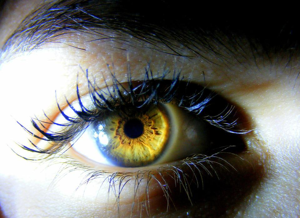 Eye, Brown, Yellow, Light, Iris, Coloring
