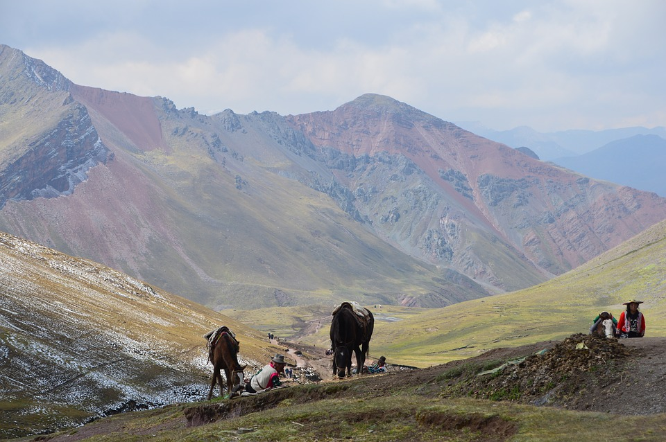 Landscape, Horses, Mountains, Peru, Hiking, Colors