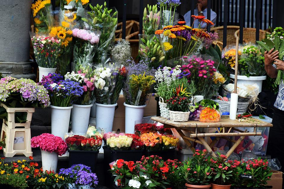 Flowers, Market, Bouquettes, Colors, Sale, Plant