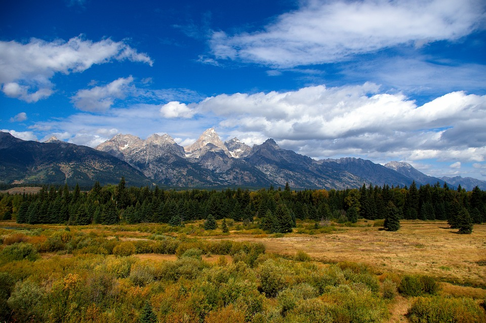 Tetons Autumn, Autumn, Colors, Grand, Teton, National