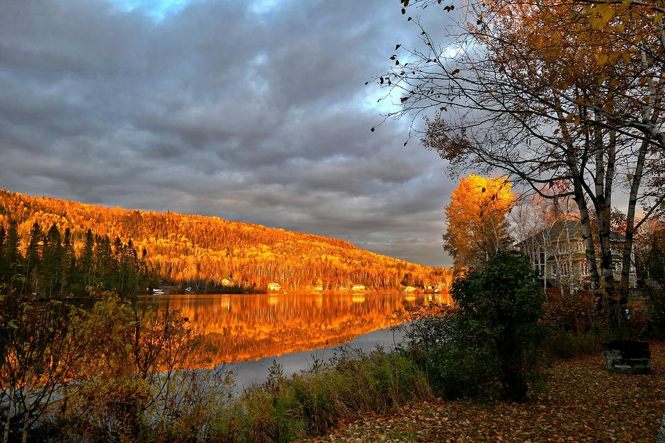 Landscape, Nature, Fall, Trees, Colors, Mountain