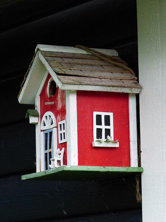Birdhouse, House, Colors, Garden, Summer, Window, Door
