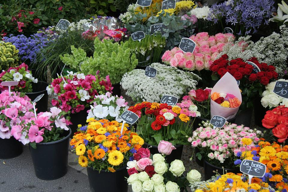 Flower Stall, Market, Flowers, Coloured, Cut Flowers