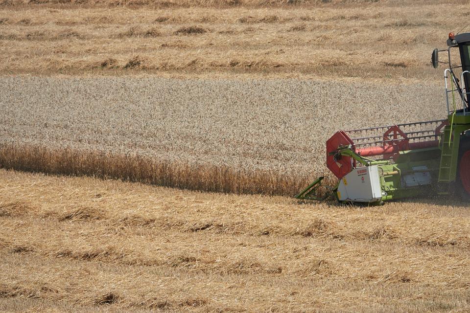 Combine Harvester, Agriculture, Harvest, Field, Rural