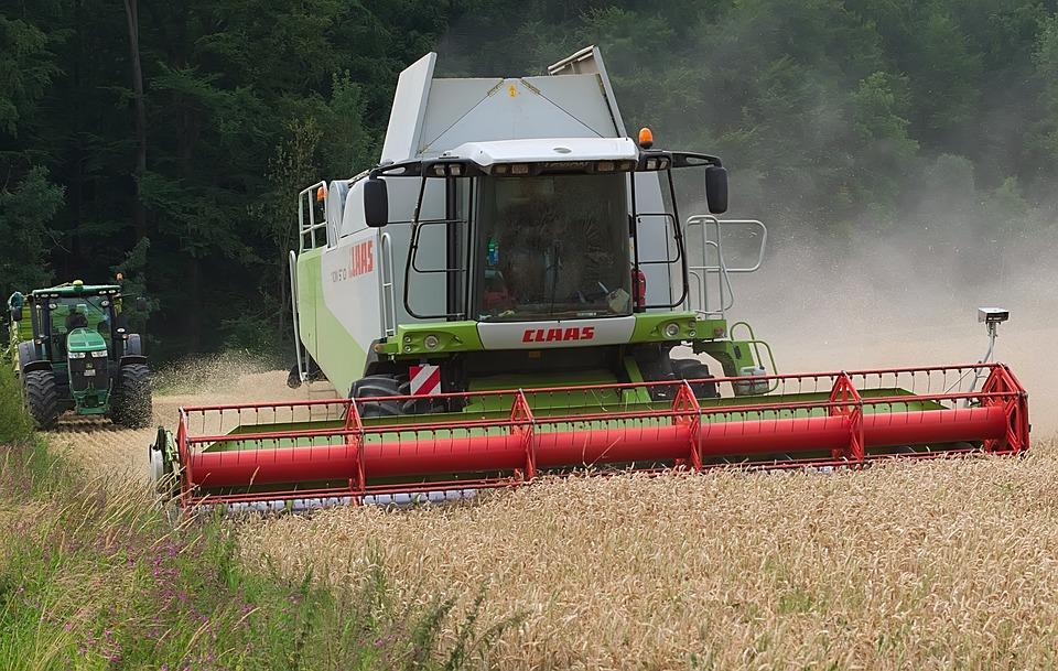 Mow, Combine Harvester, Grain, Field, Cornfield