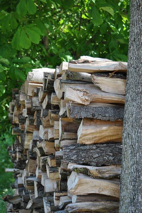 Wood, Firewood, Combs Thread Cutting, Log, Sawed Off