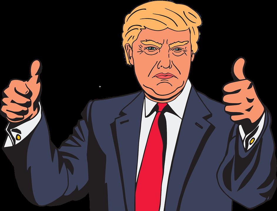 Cartoon, Celebrity, Comic, Donald Trump, Male, Man