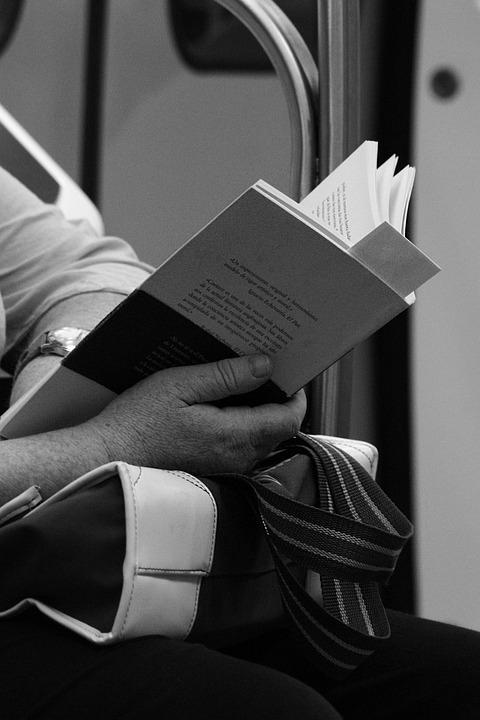 Commute, Passenger, Reading, Book, Travel, Transport