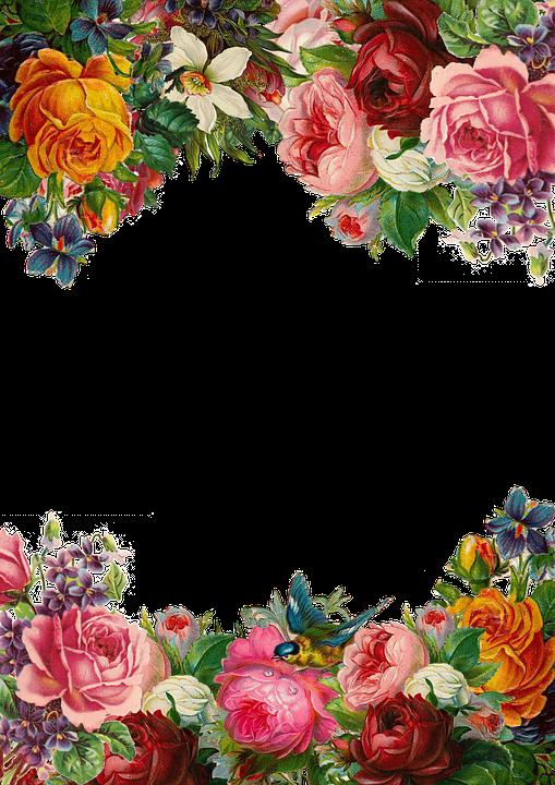 flower rose frame collection vintage composition
