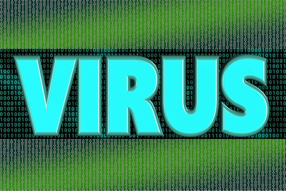 Computer, Virus, Trojan, Program, Programming, Dialogue