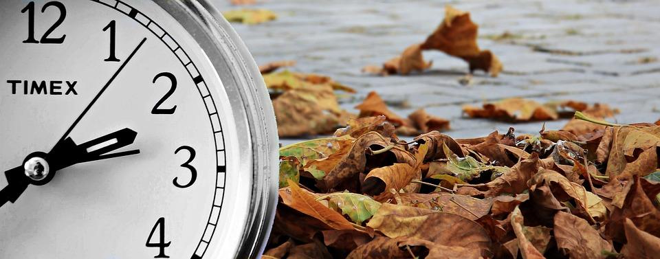 Autumn, Season, Time, Clock, Concept