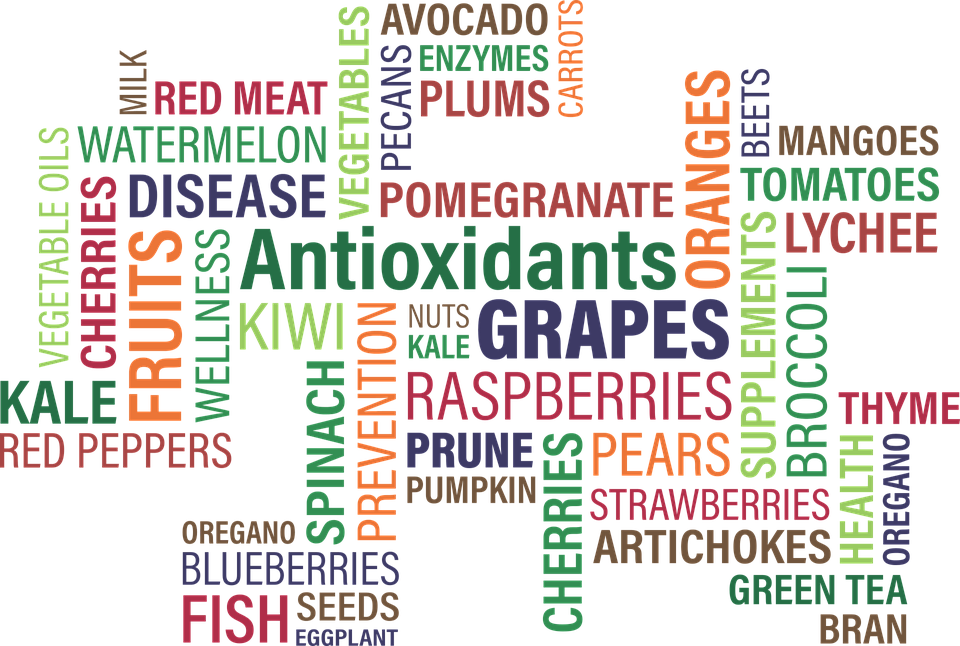 Cloud, Concept, Word, Antioxidants, Oxidants, Fruit