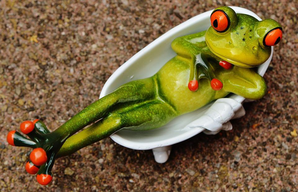 Frog, Funny, Bath, Cute, Concerns, Relaxed, Relax, Fig
