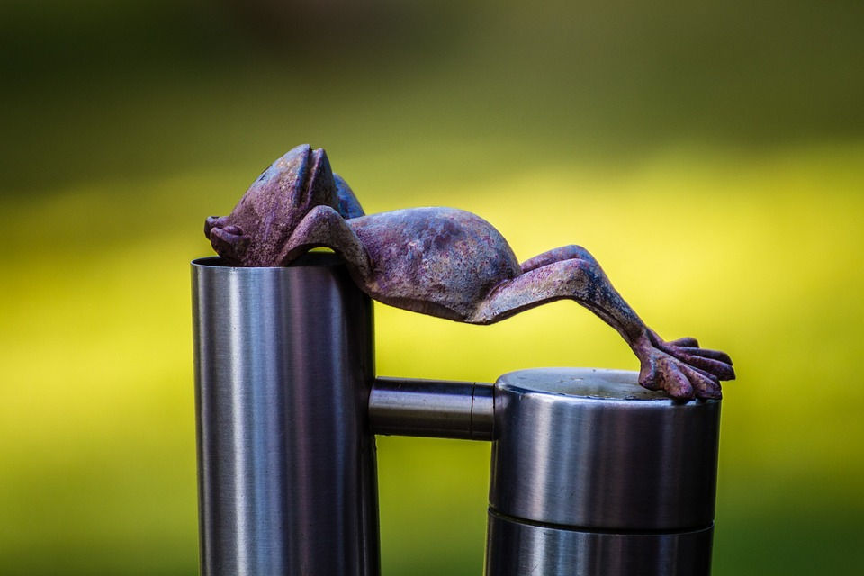 Frog, Relax, Rest, Concerns, Relaxed, Serenity, Break