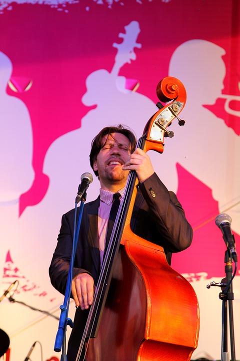 Jazz, Music, Double Bass, Concert, Tool, Musician