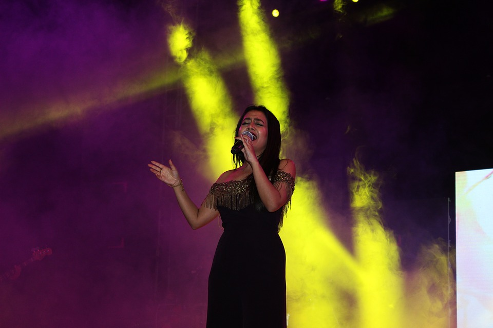 People, Performance, Concert, Music, Stage, Singer