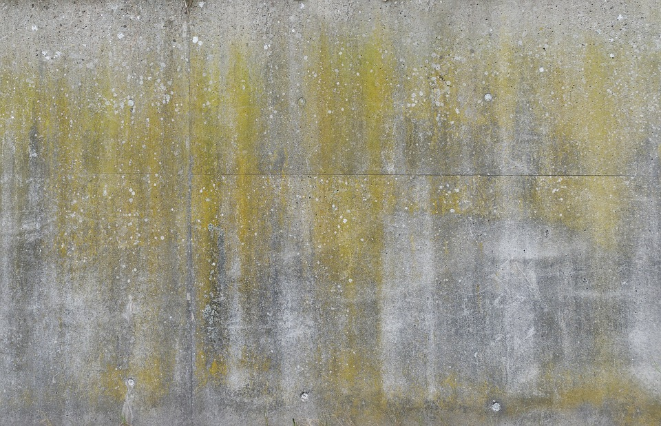 Concrete Wall, Retaining Wall, Verdigris, Weathered
