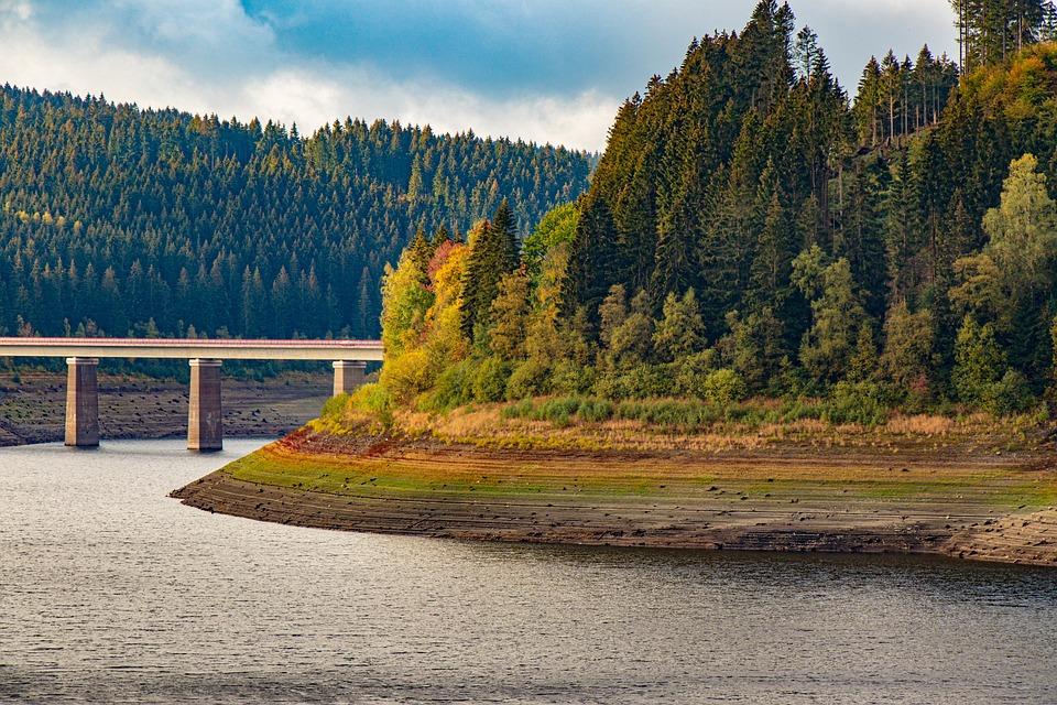 Oker Dam, Reservoir, Okertalsperre, Trees, Conifers