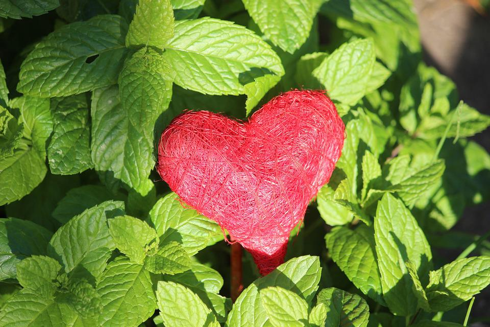 Heart, Red, Connectedness, Luck, Love, Decoration