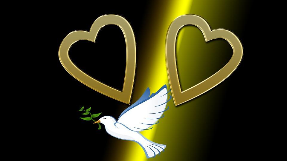 Heart, Dove, Love, Connectedness, Romantic