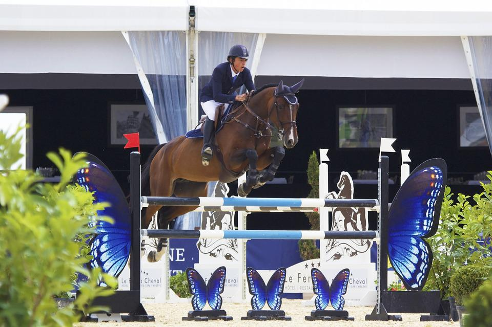 Horse, Jump, Contest, Equestrian, Sport, Competition